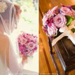 Sesnon Serenade Flowers