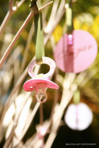 Sugar & Spice Branches Pacifier